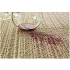 Hóa chất giặt tẩy các vết ố và khử mùi trên thảm ghế